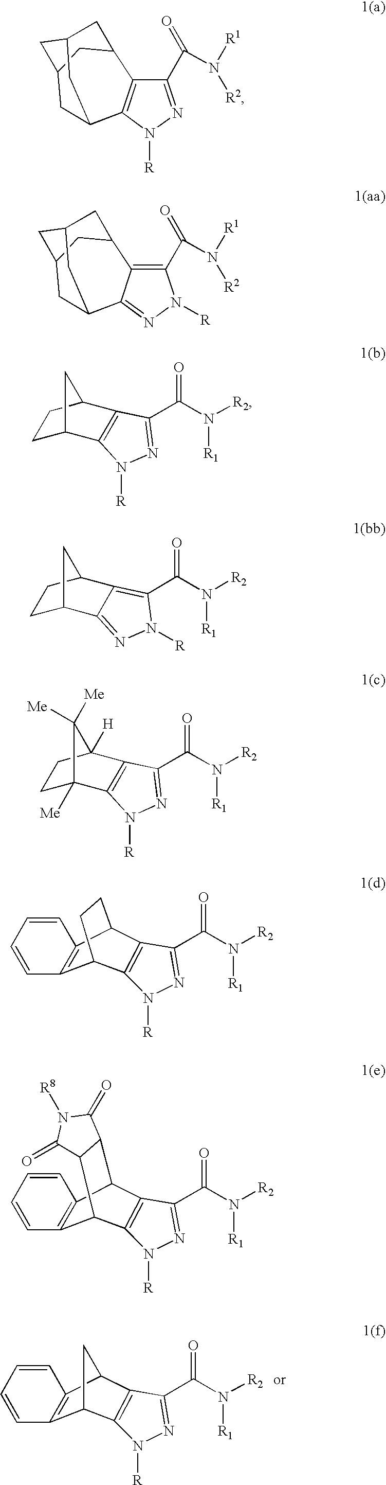 US20080234259A1 - Novel Cannabinoid Receptor Ligands, Pharmaceutical on