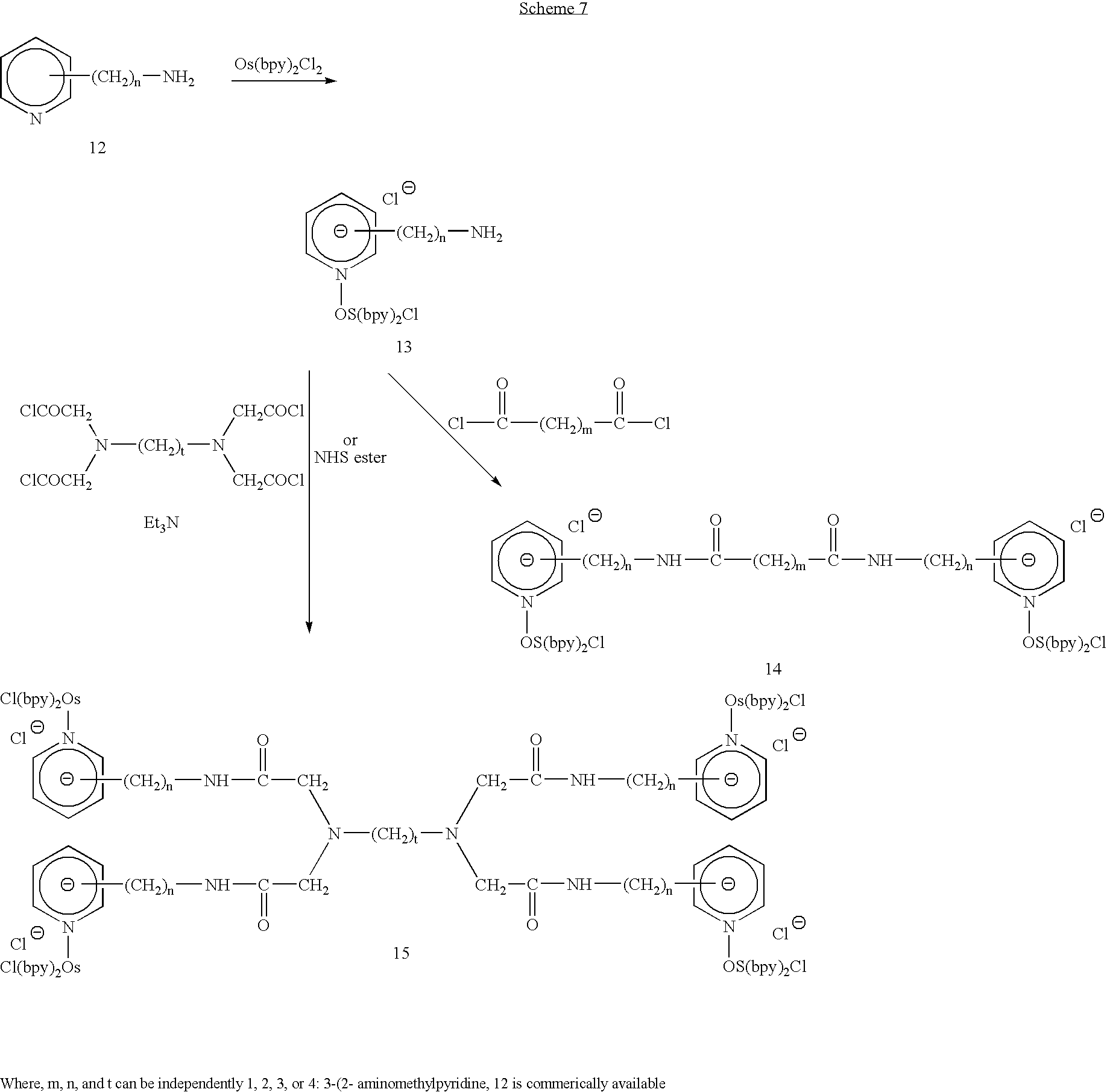 Figure US20070099211A1-20070503-C00008