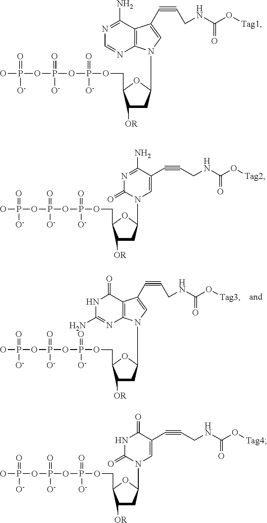 US20120142006A1 - Massive parallel method for decoding dna and rna