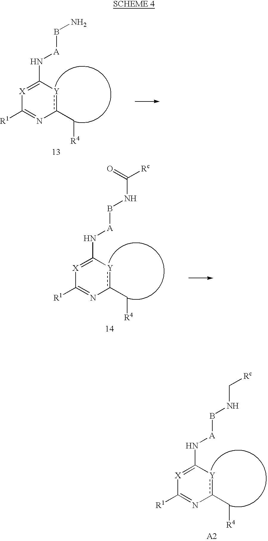Figure US06506762-20030114-C00022