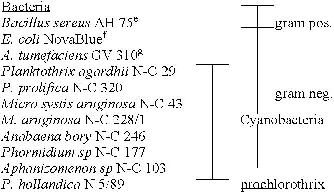 Figure US20040215011A1-20041028-C00001