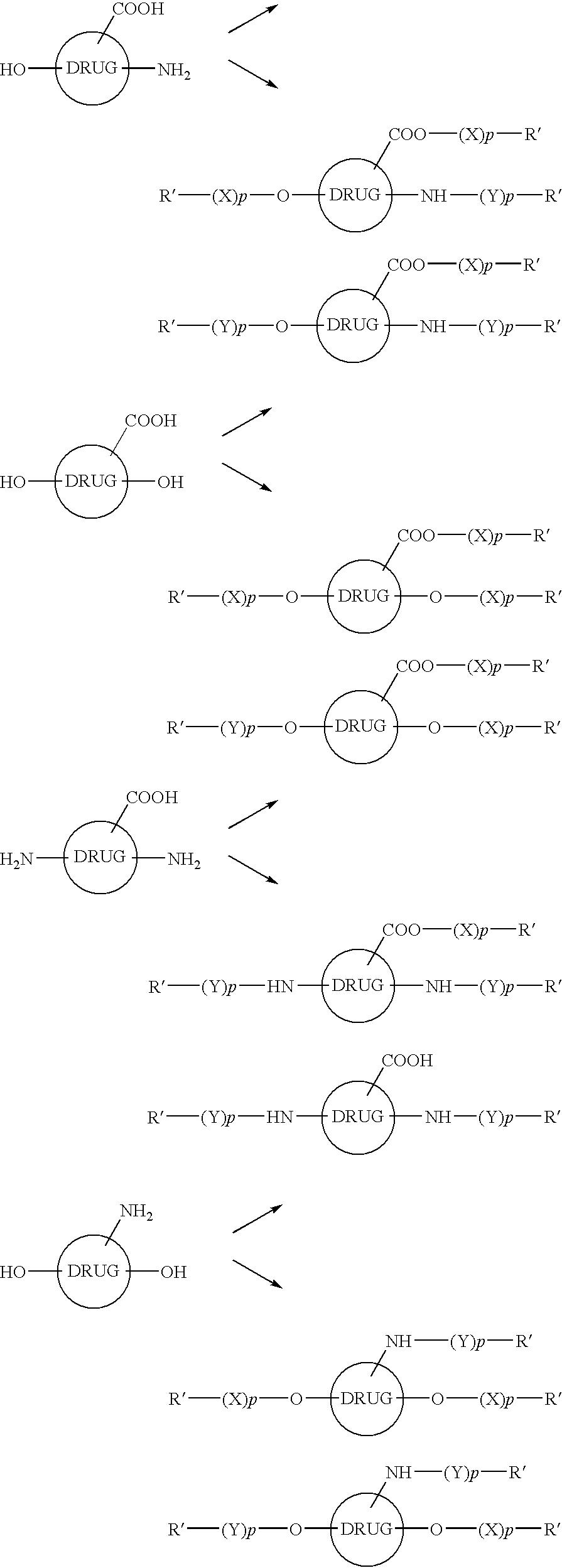Figure US20100152272A1-20100617-C00019