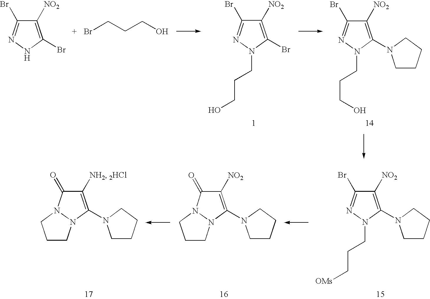 Figure US07488356-20090210-C00048