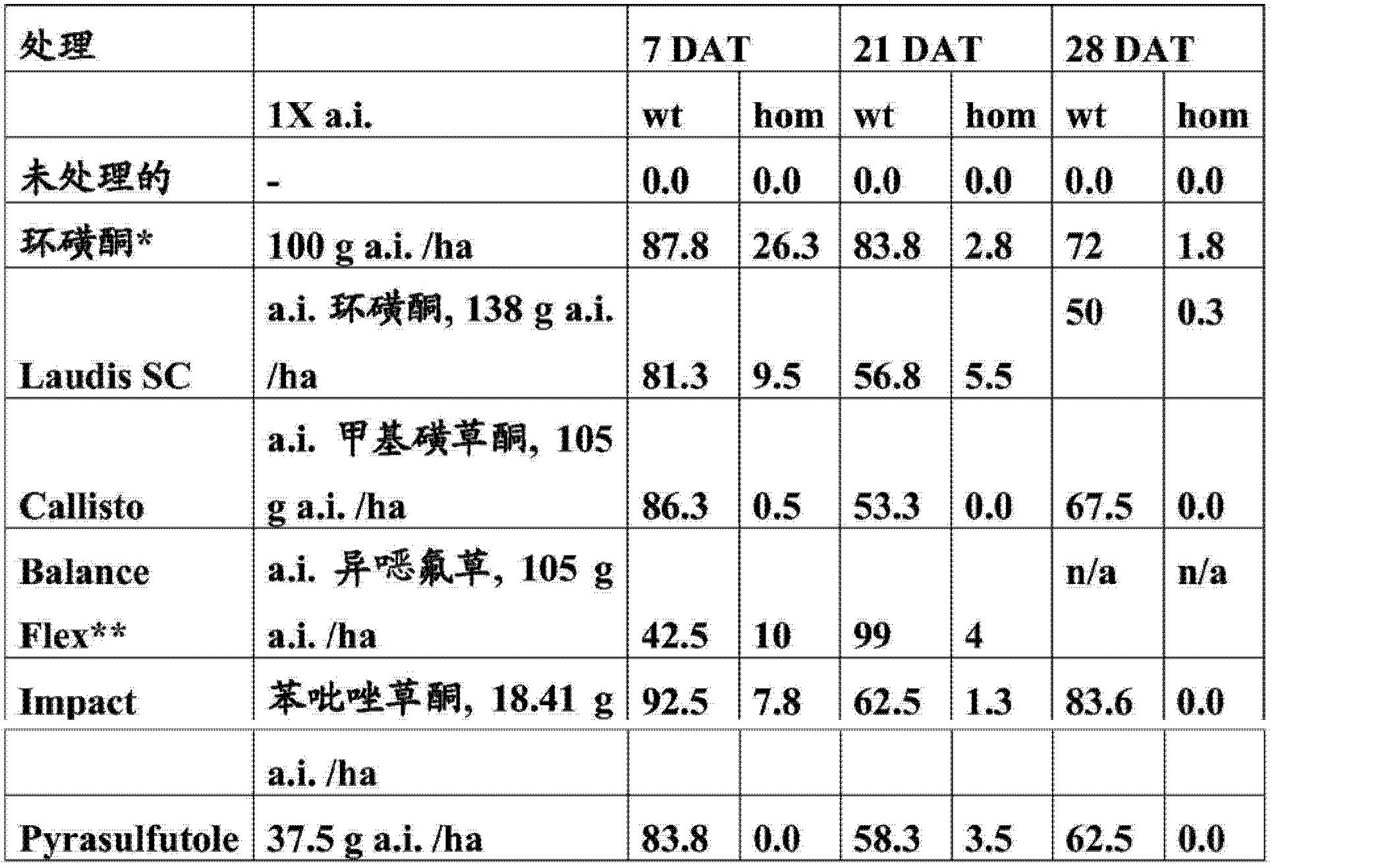 Figure CN103981149AD00621