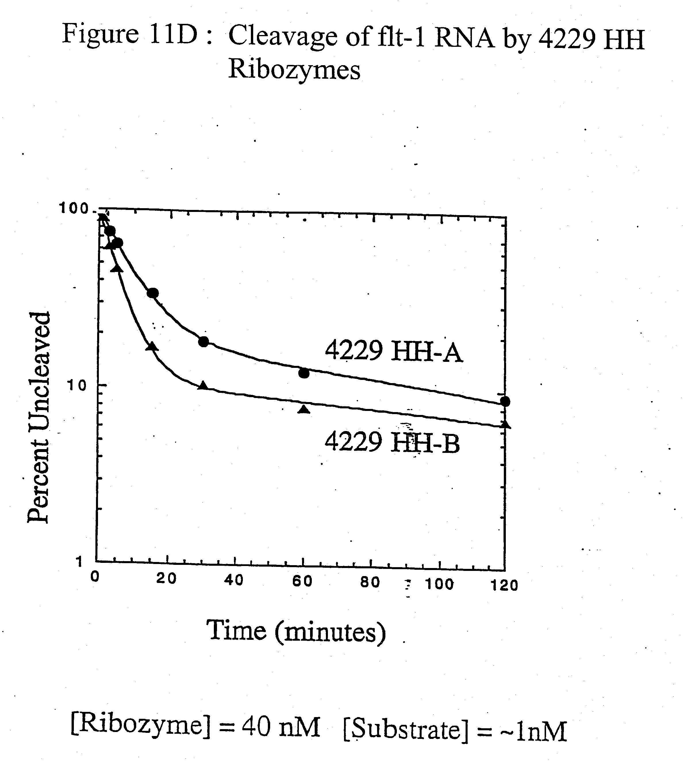 Us20040102389a1 Nucleic Acid Mediated Treatment Of Diseases Or Midland 1165 Diagram 18 19 805 Conditions Related To Levels Vascular Endothelial Growth Factor Receptor Vegf R