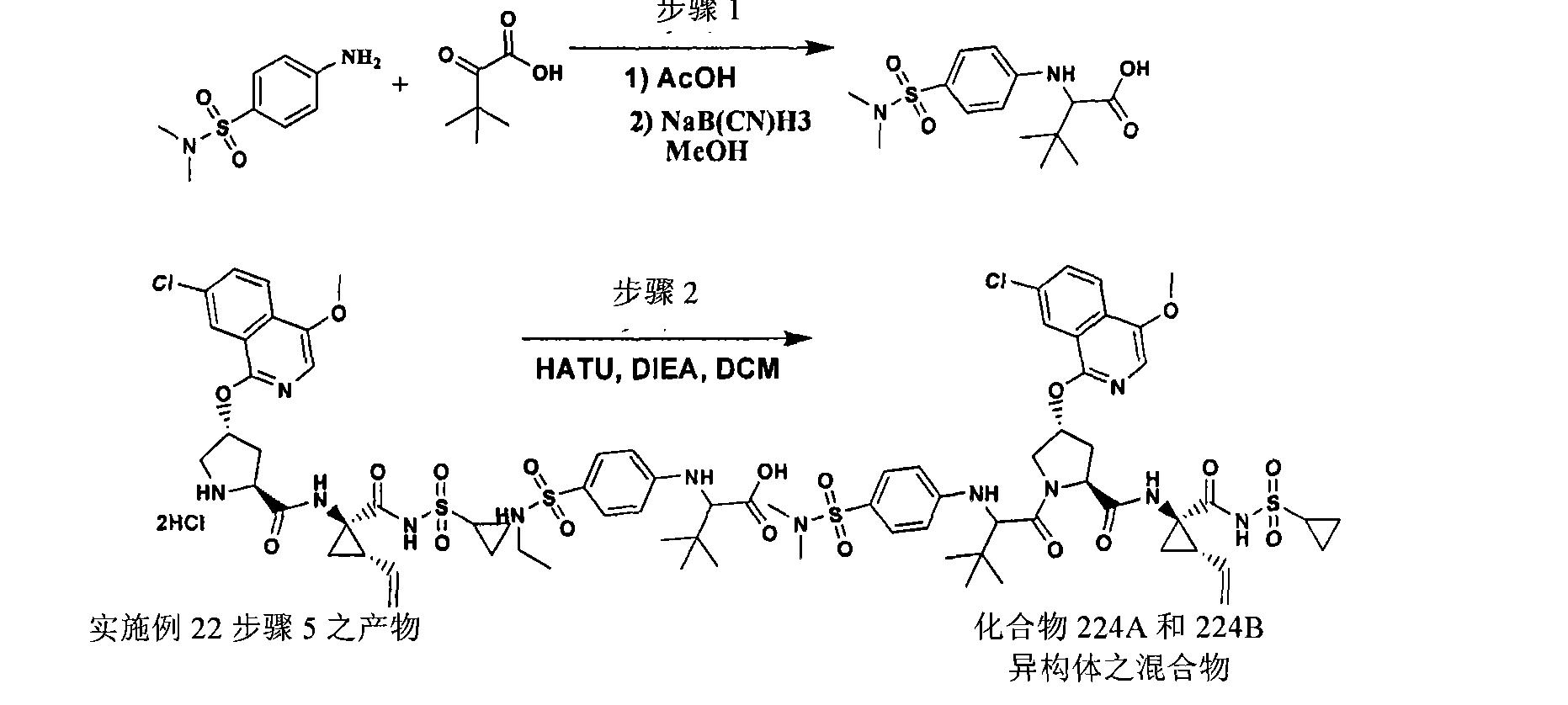 Figure CN101541784BD01531