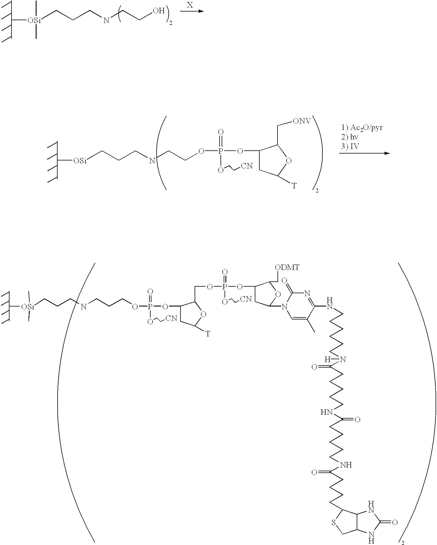 Figure US06451536-20020917-C00016