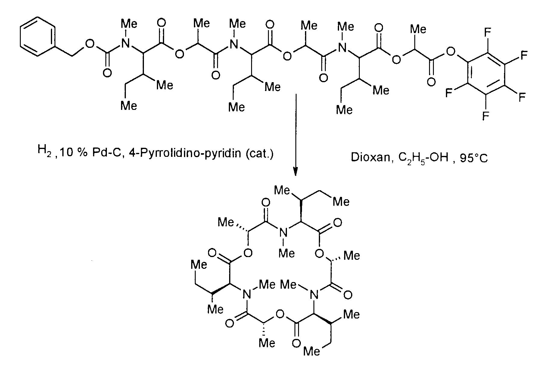 Carbon-14-Dating Formel