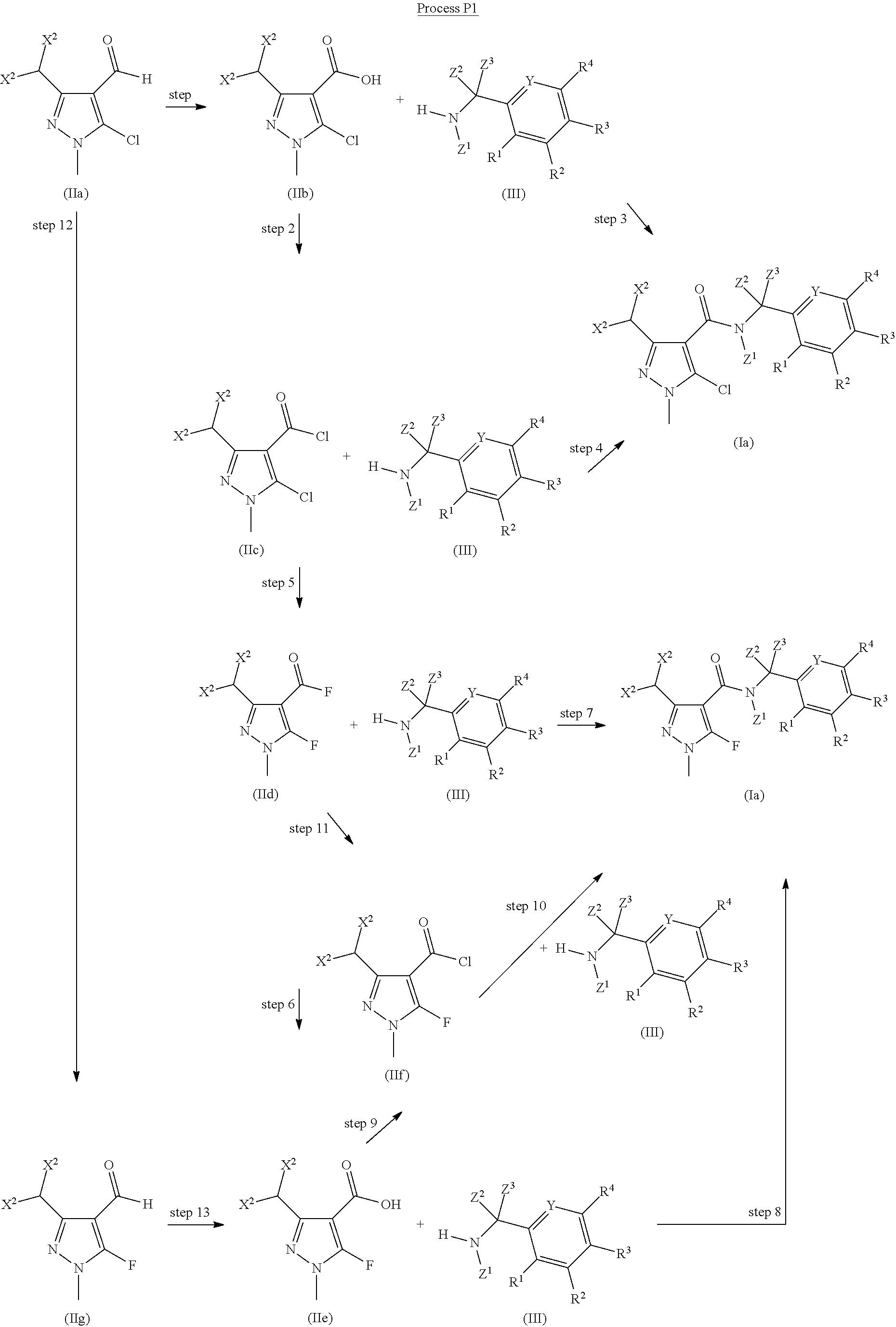 US9398767B2 - Fungicide pyrazole carboxamides derivatives