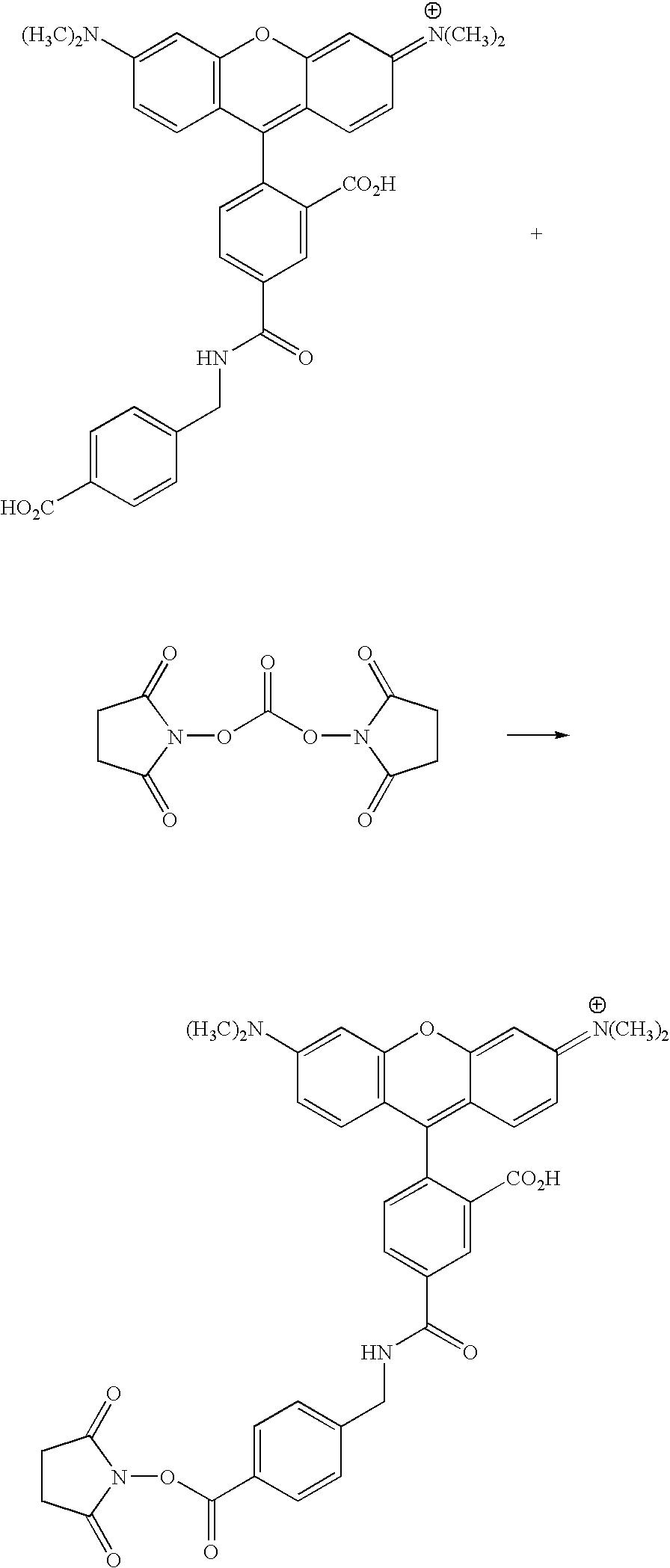 Figure US20070154926A1-20070705-C00108