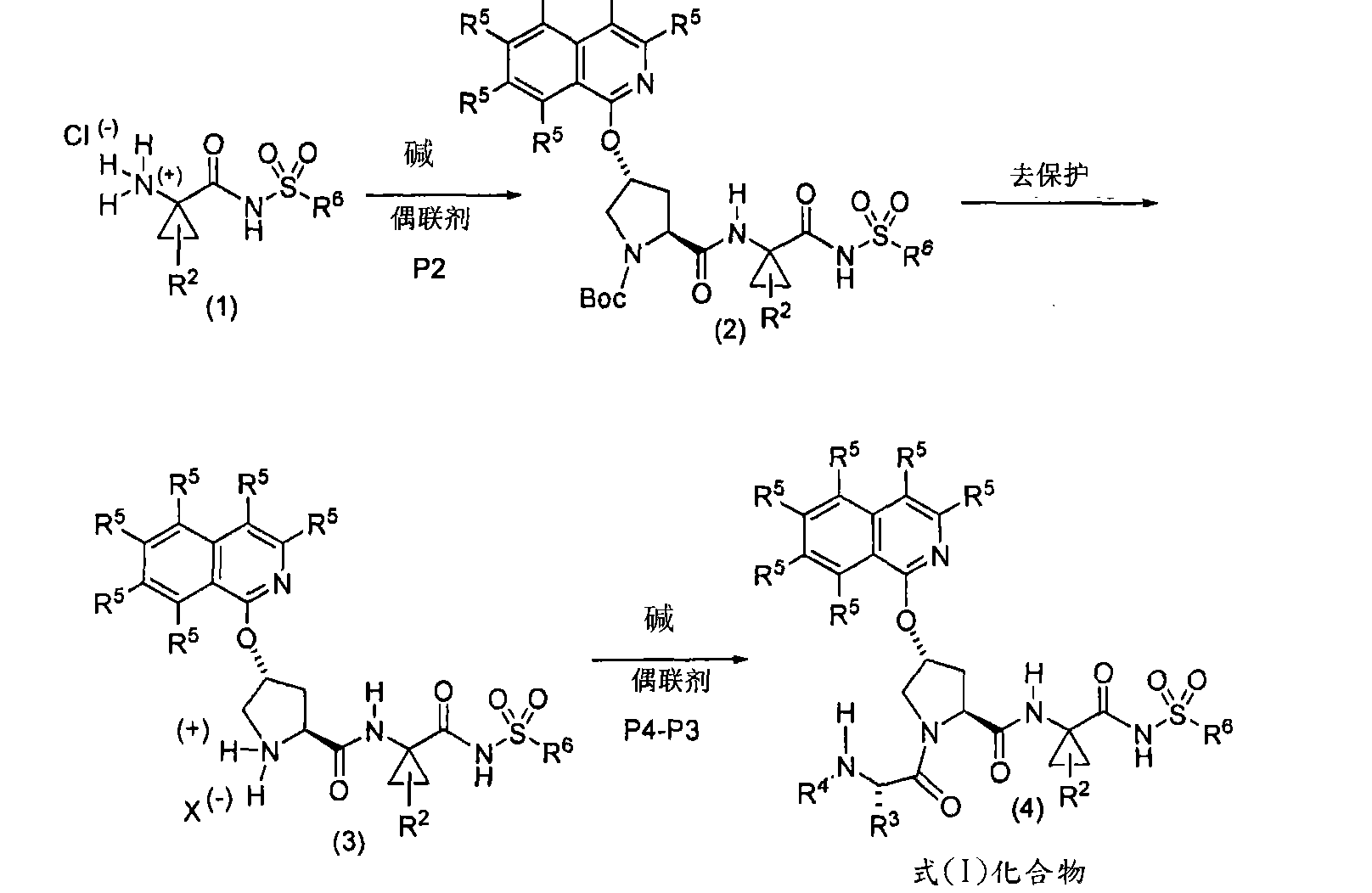 Figure CN101541784BD00301