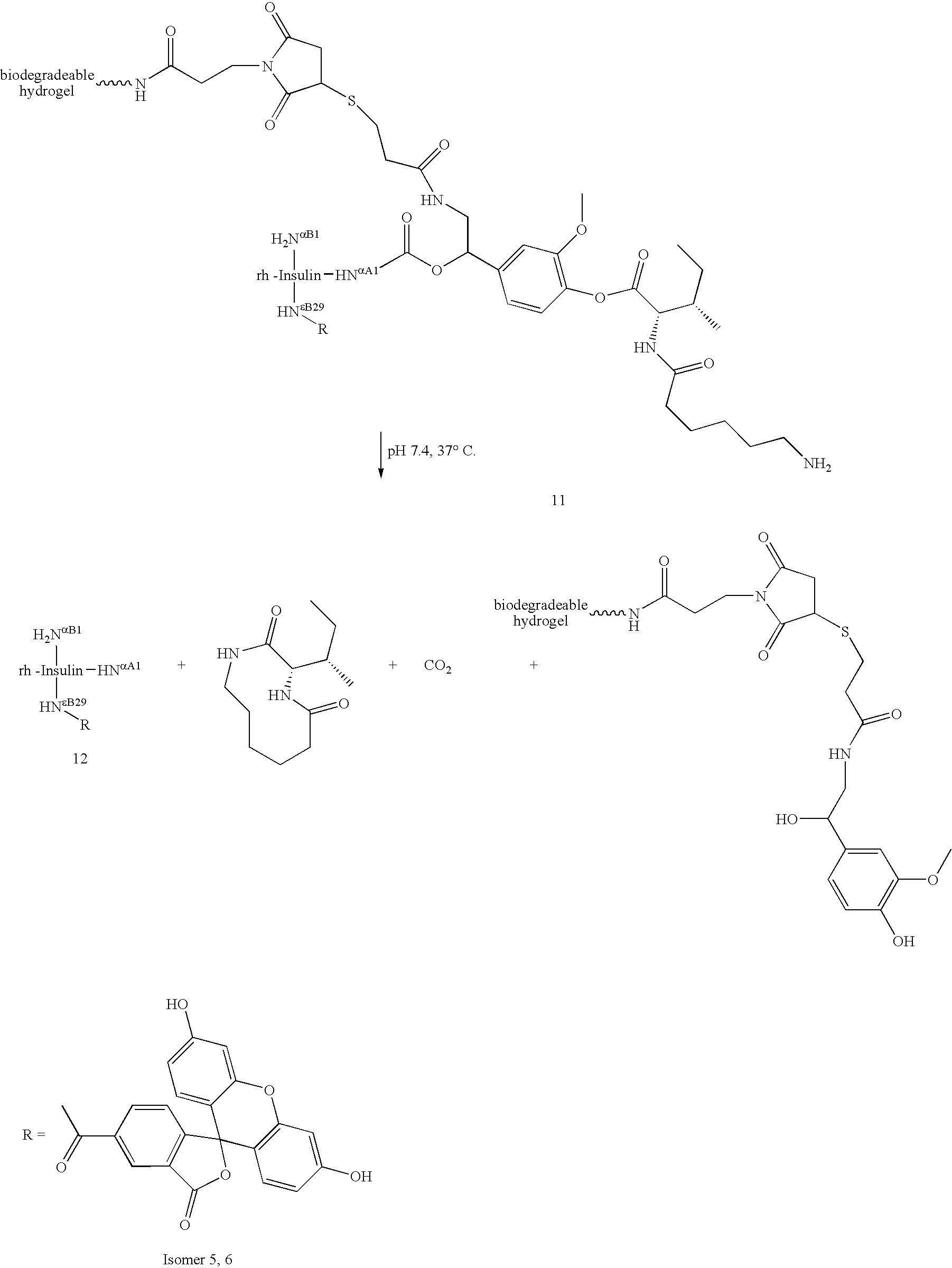 Figure US20060002890A1-20060105-C00009