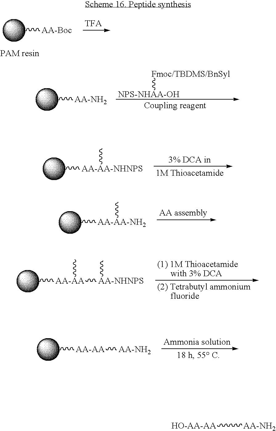 Figure US20080221303A1-20080911-C00055