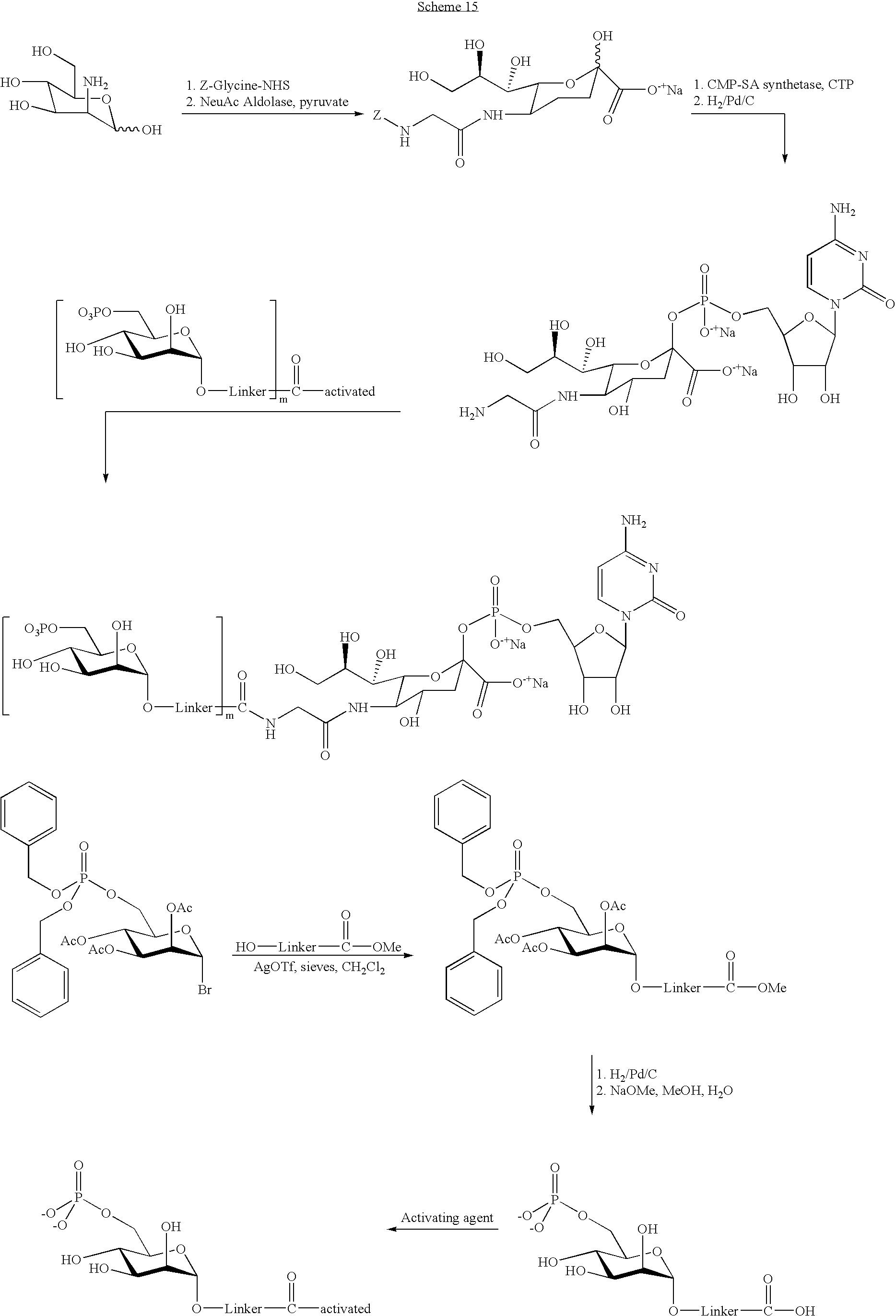 Figure US20040115168A1-20040617-C00120