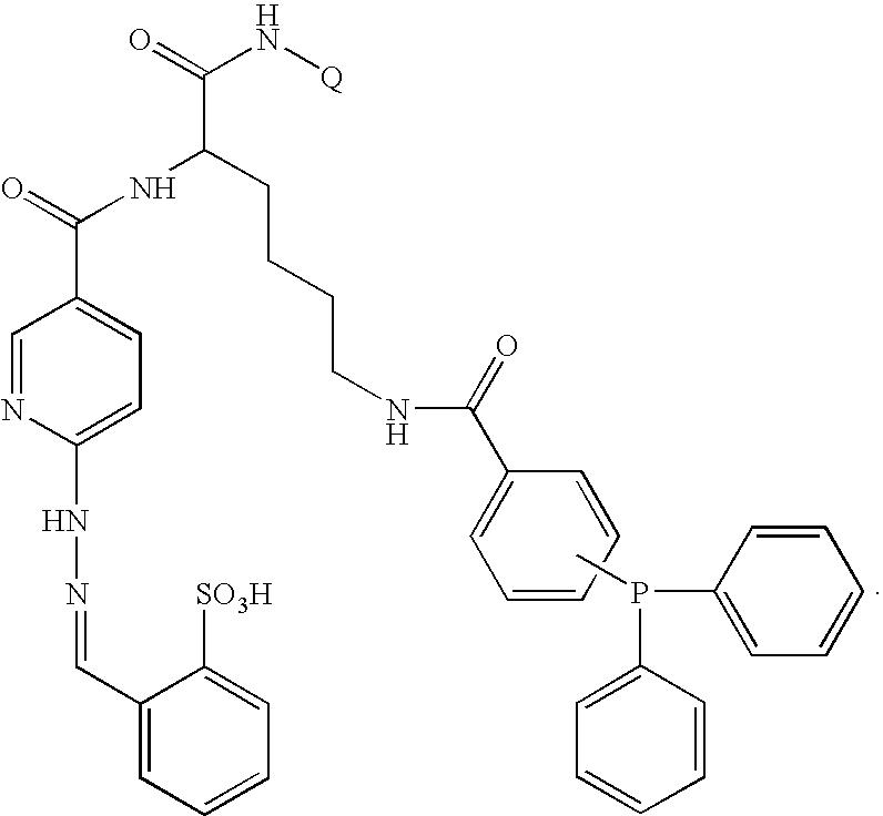 Figure US07317104-20080108-C00013