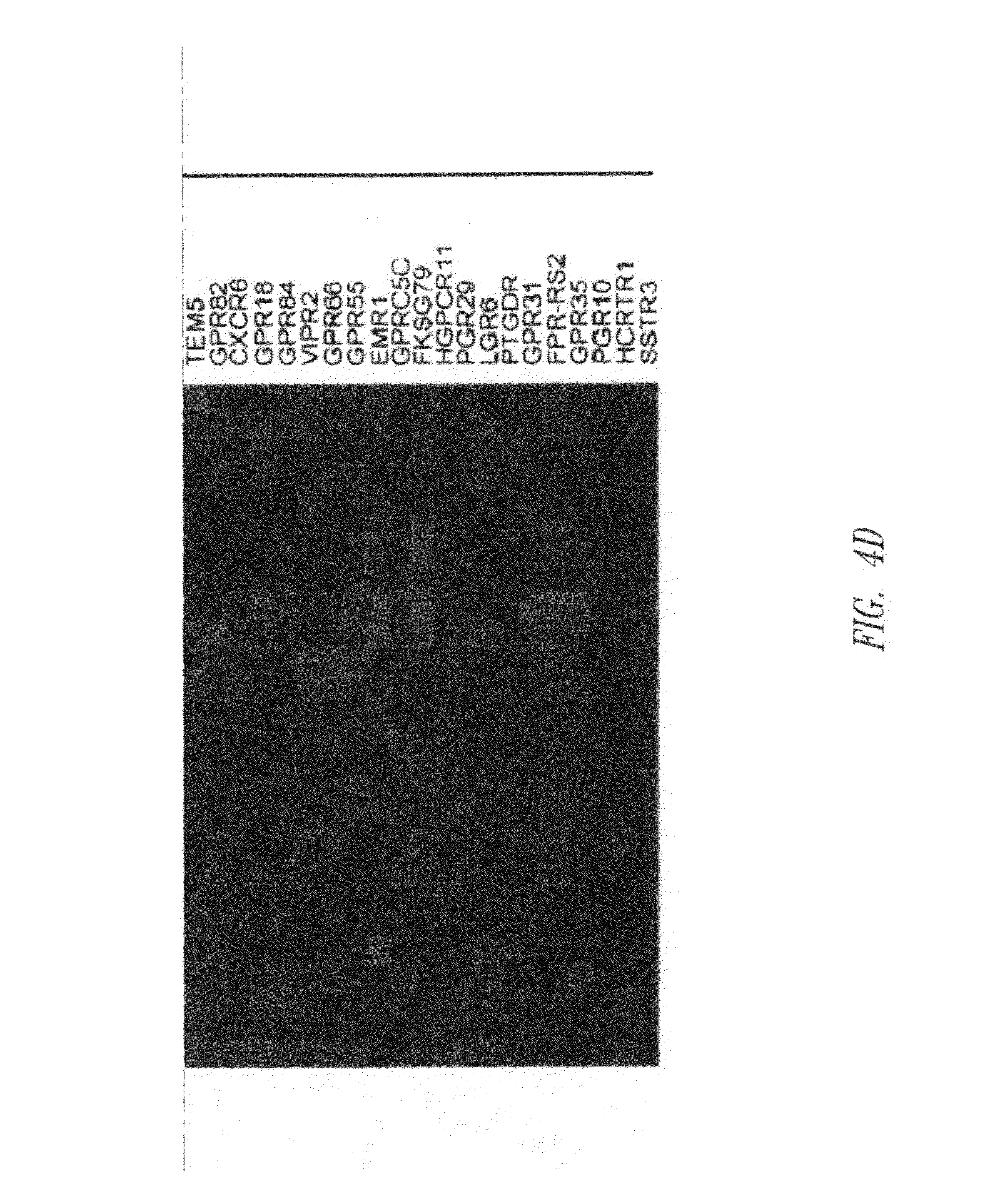 US8999654B2 Method of identifying a compound
