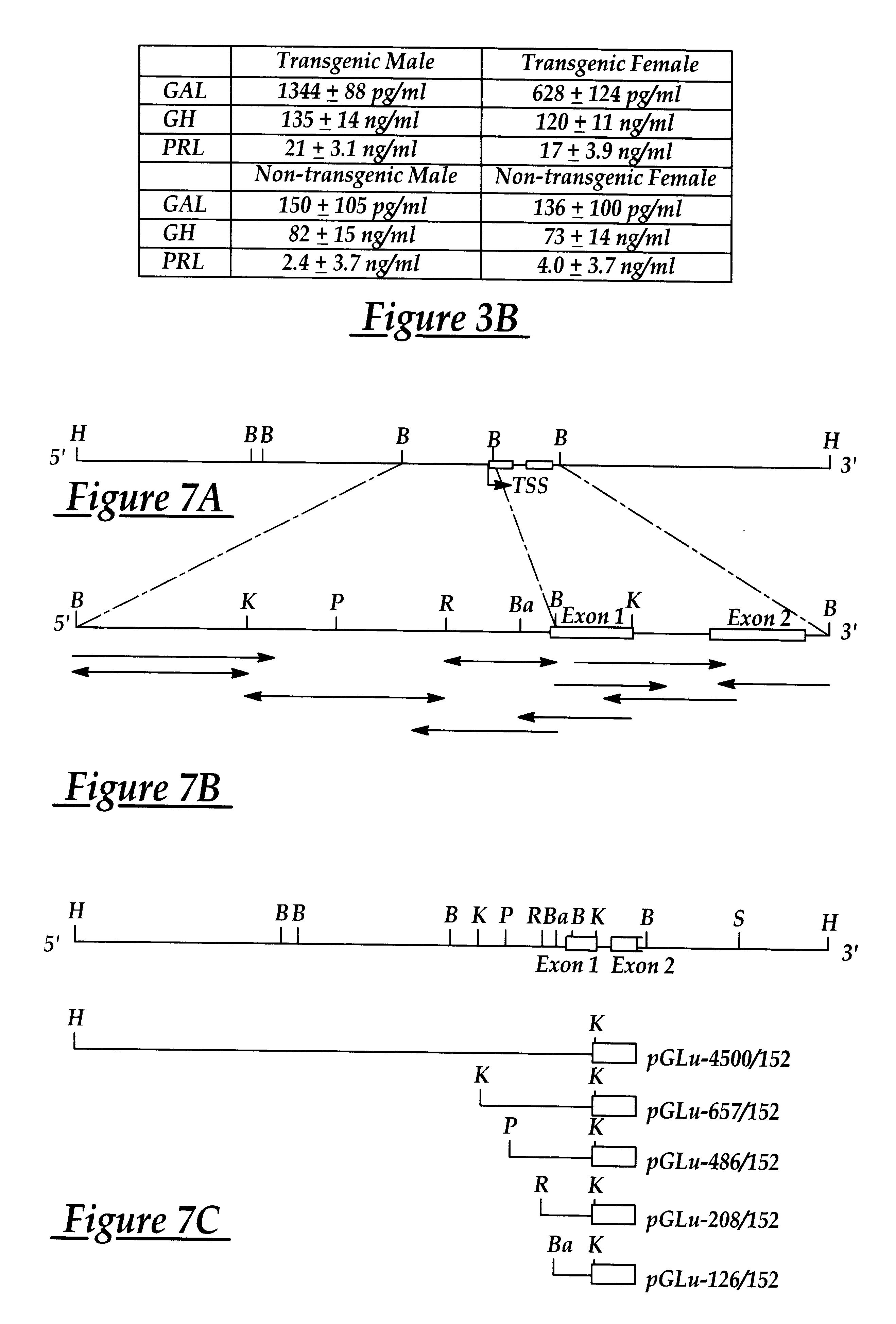 US6414220B1 - Galanin transgenic mice - Google Patents
