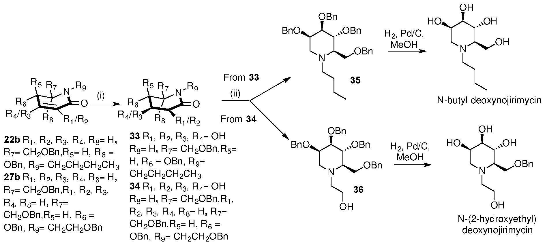 WO2017191657A1 - Glycolactam compounds, process for