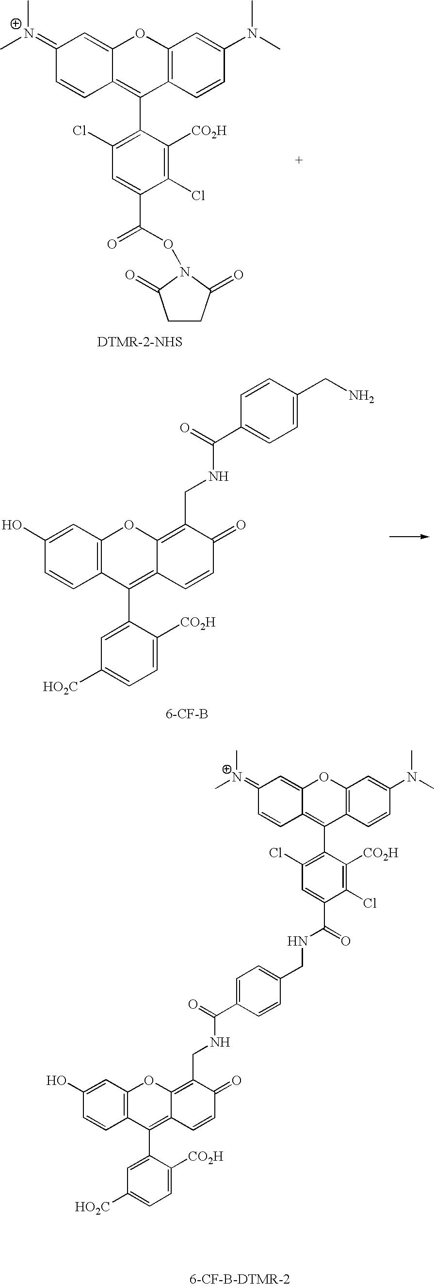 Figure US20070154926A1-20070705-C00123