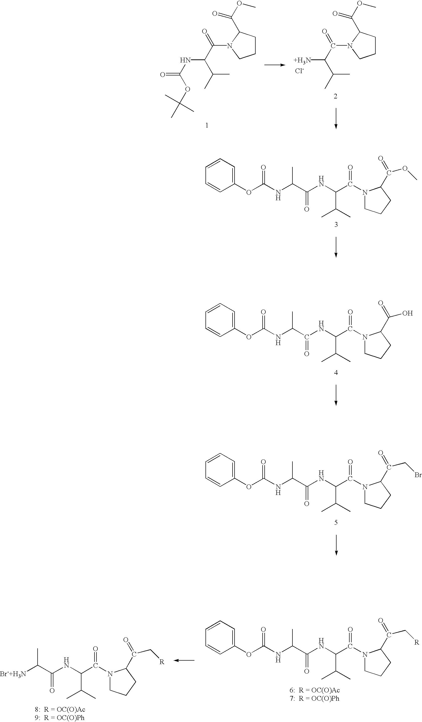 Figure US20030130199A1-20030710-C00011