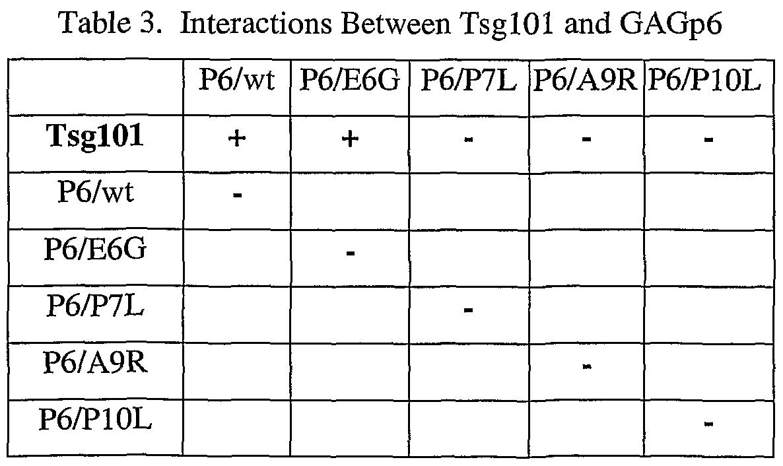 Figure imgf000096_0002