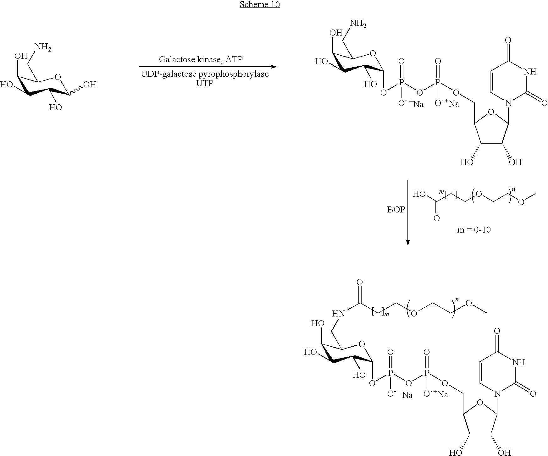 Figure US08008252-20110830-C00111