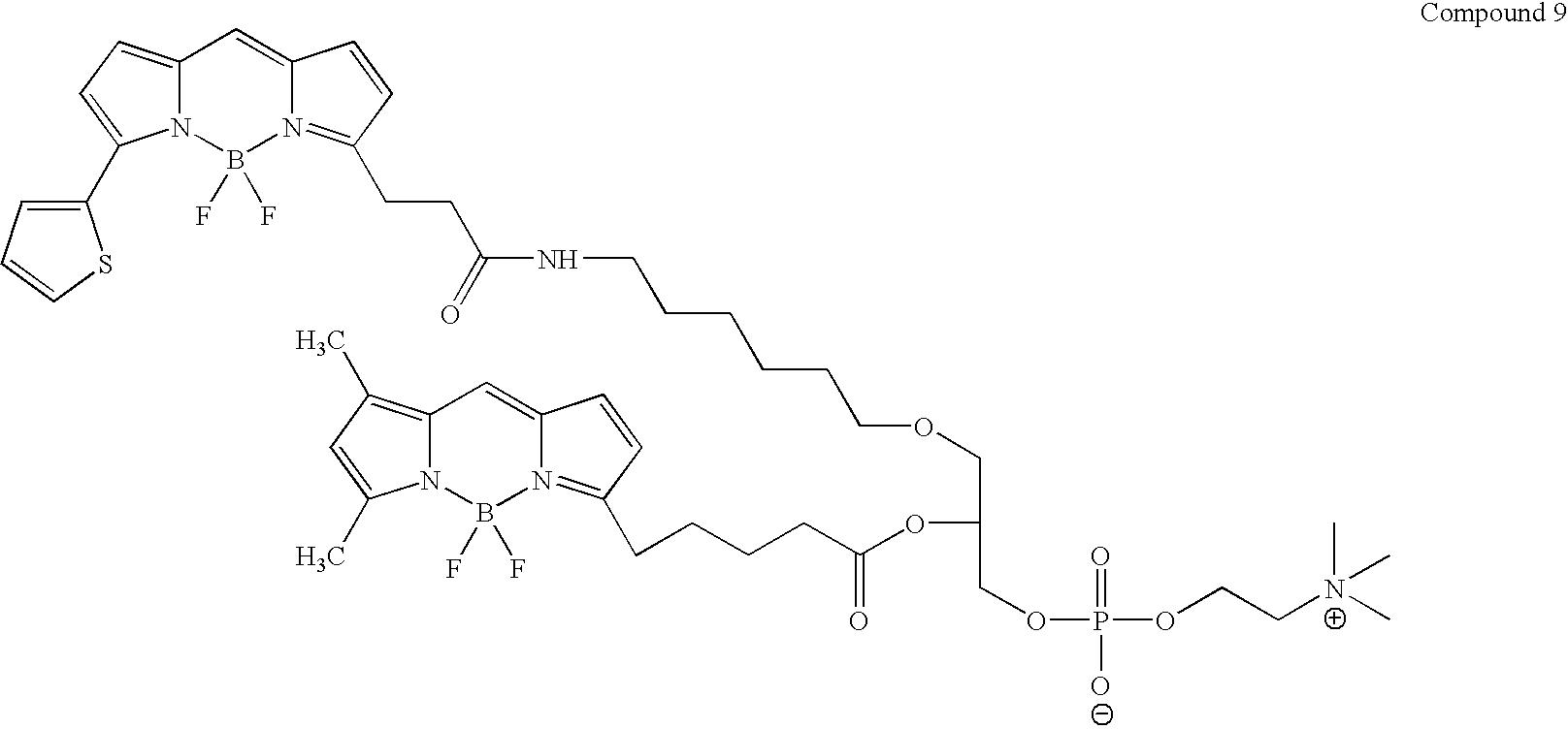 Figure US08513451-20130820-C00025