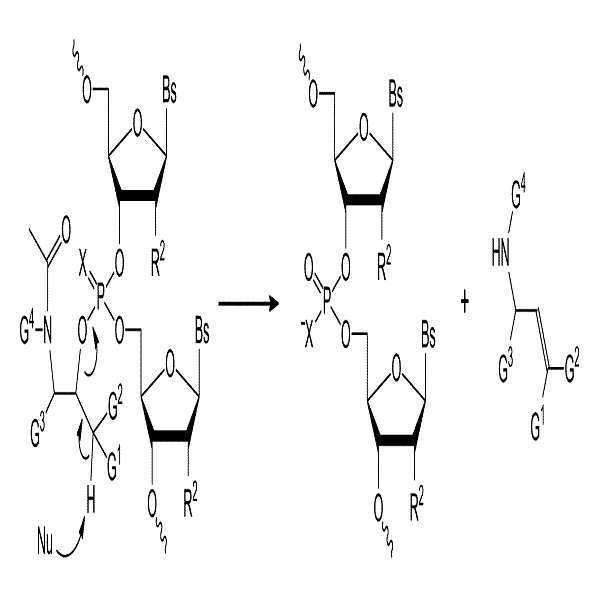 Figure 112015015674384-pct00025