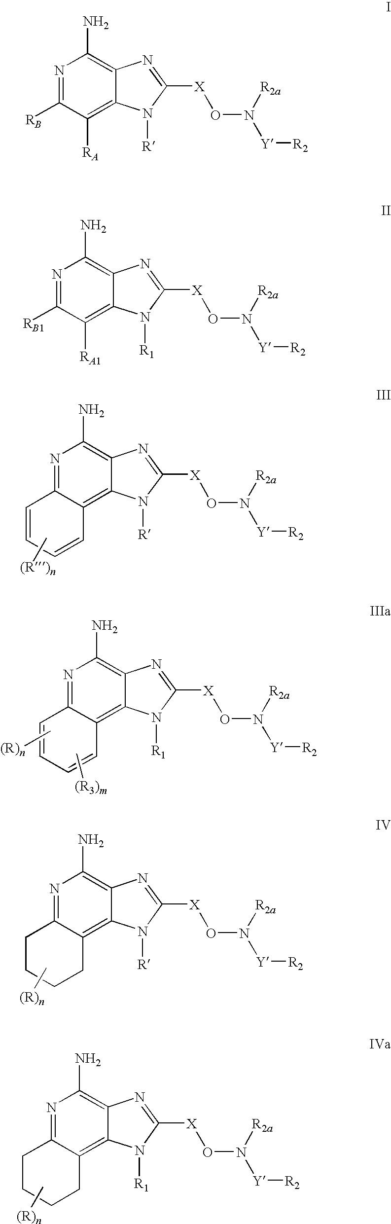 Figure US20090105295A1-20090423-C00003