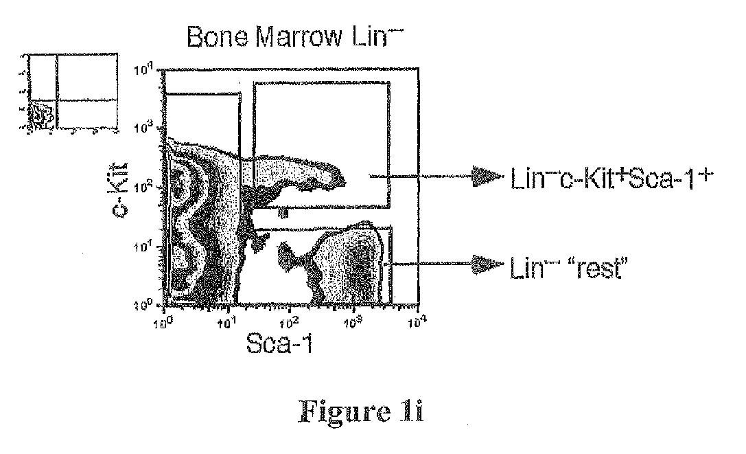 Figure imgaf009