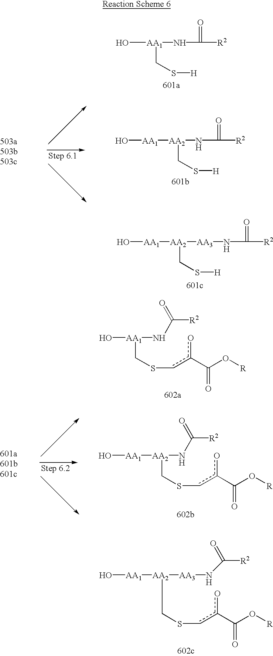 US20030013847A1 - Pyruvate derivatives - Google Patents