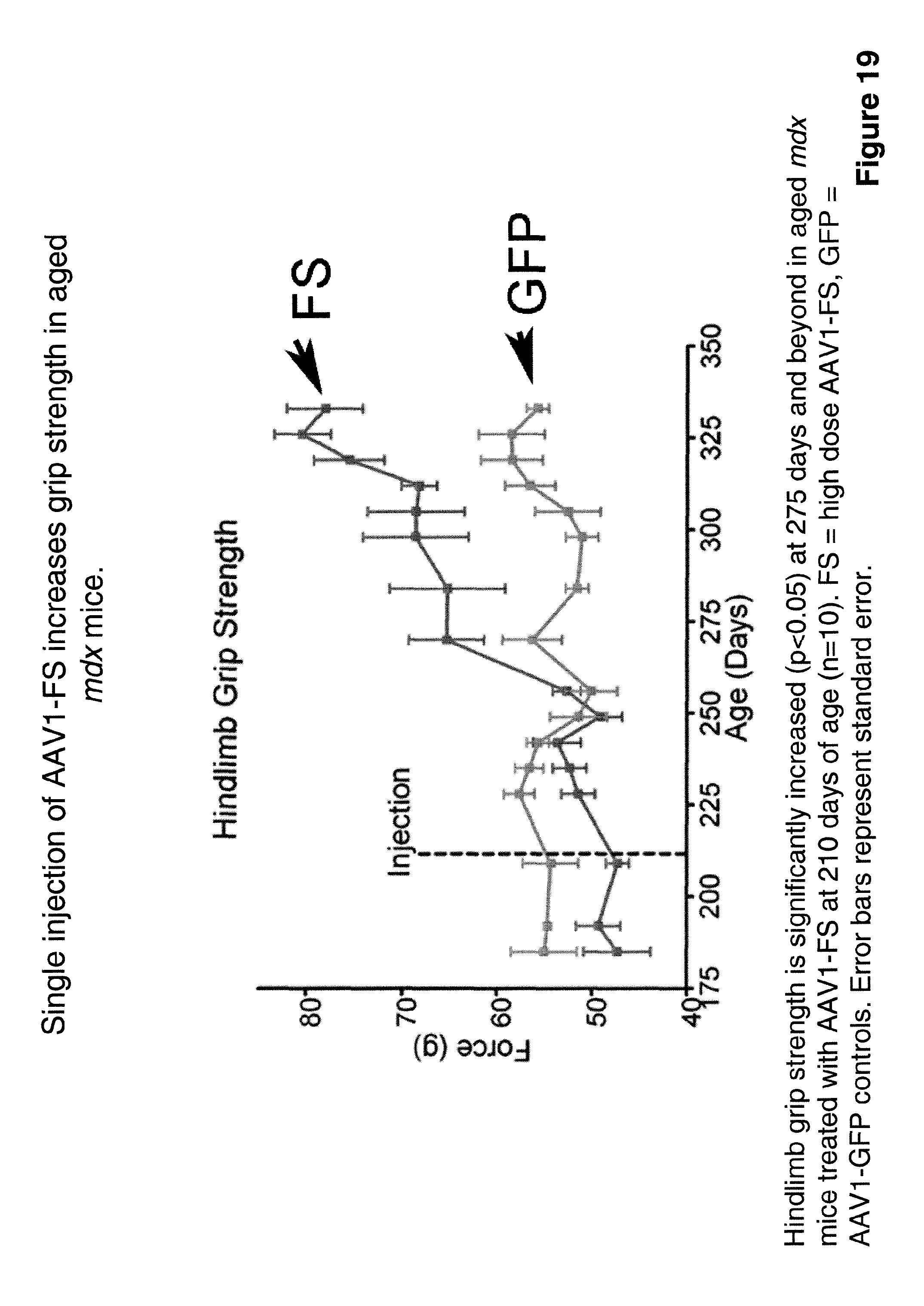 US8895309B2 - Myostatin inhibition for enhancing muscle and