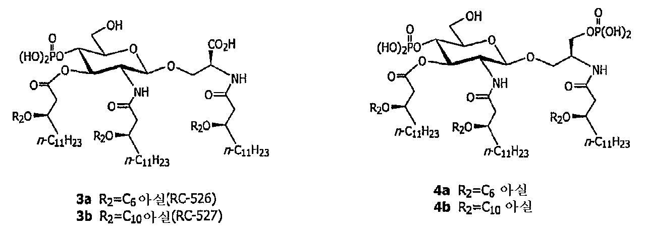 Figure 112005036305208-pct00012
