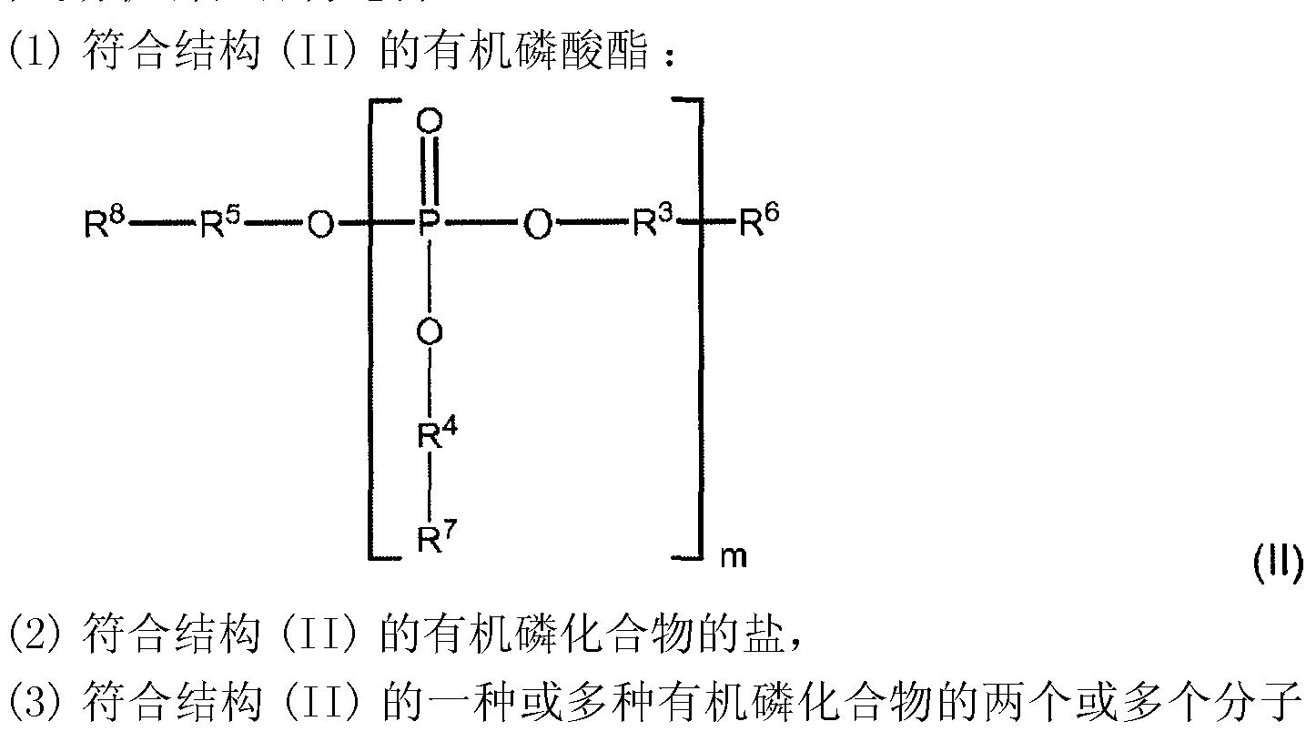 Figure CN101466538BC00071