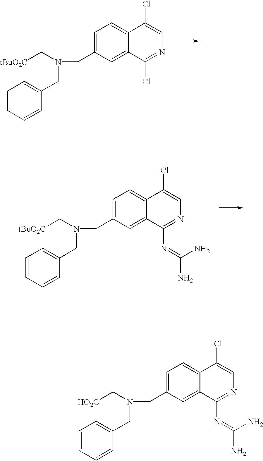 Figure US20030199440A1-20031023-C00101