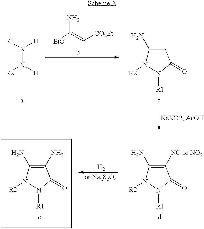 Figure US07488356-20090210-C00027
