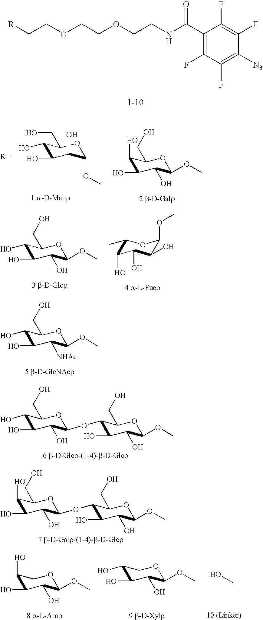 Figure US20100028559A1-20100204-C00020