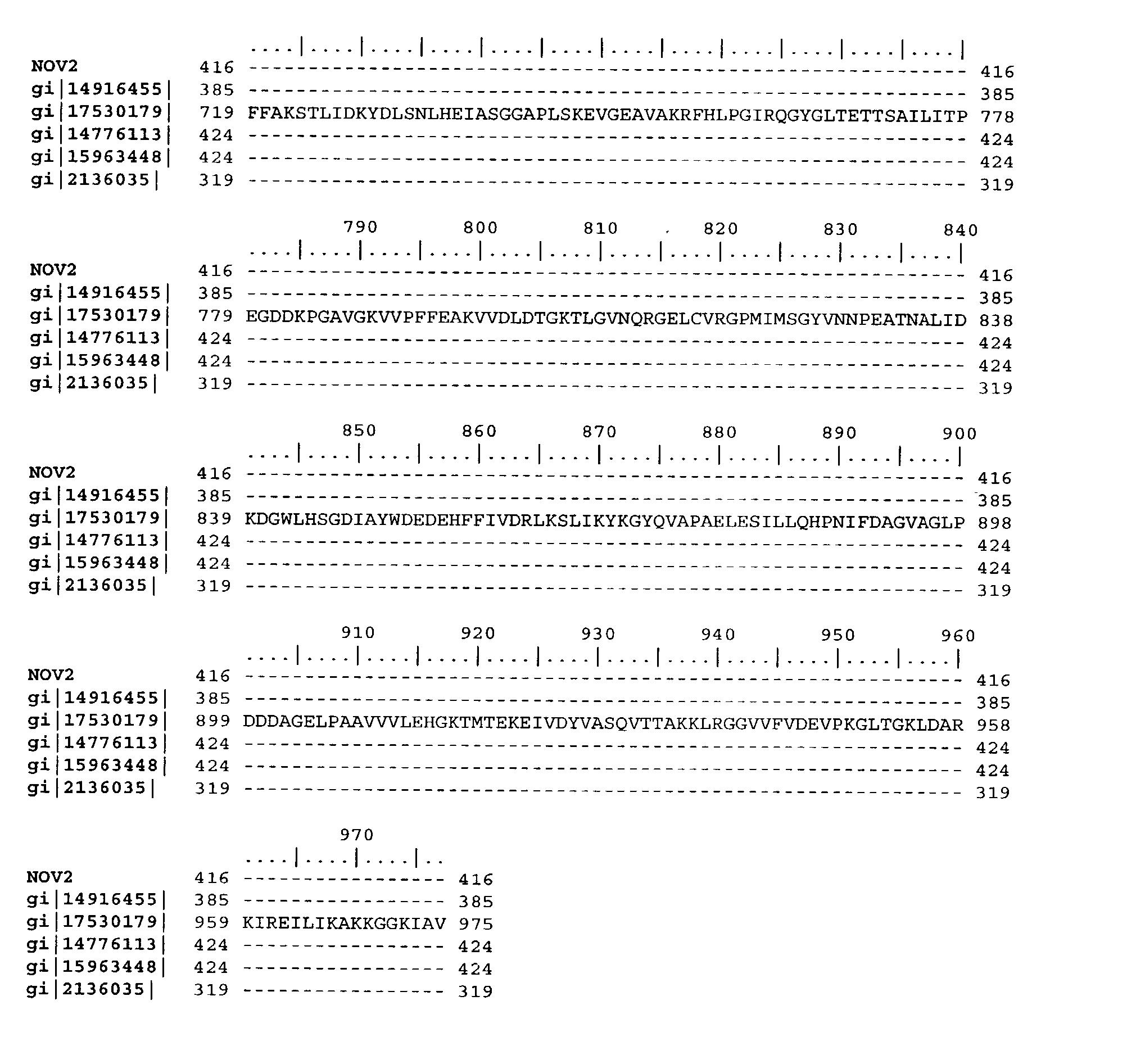 Figure US20040033493A1-20040219-P00005