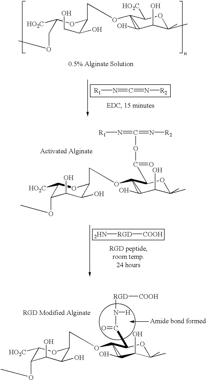 Figure US06642363-20031104-C00007