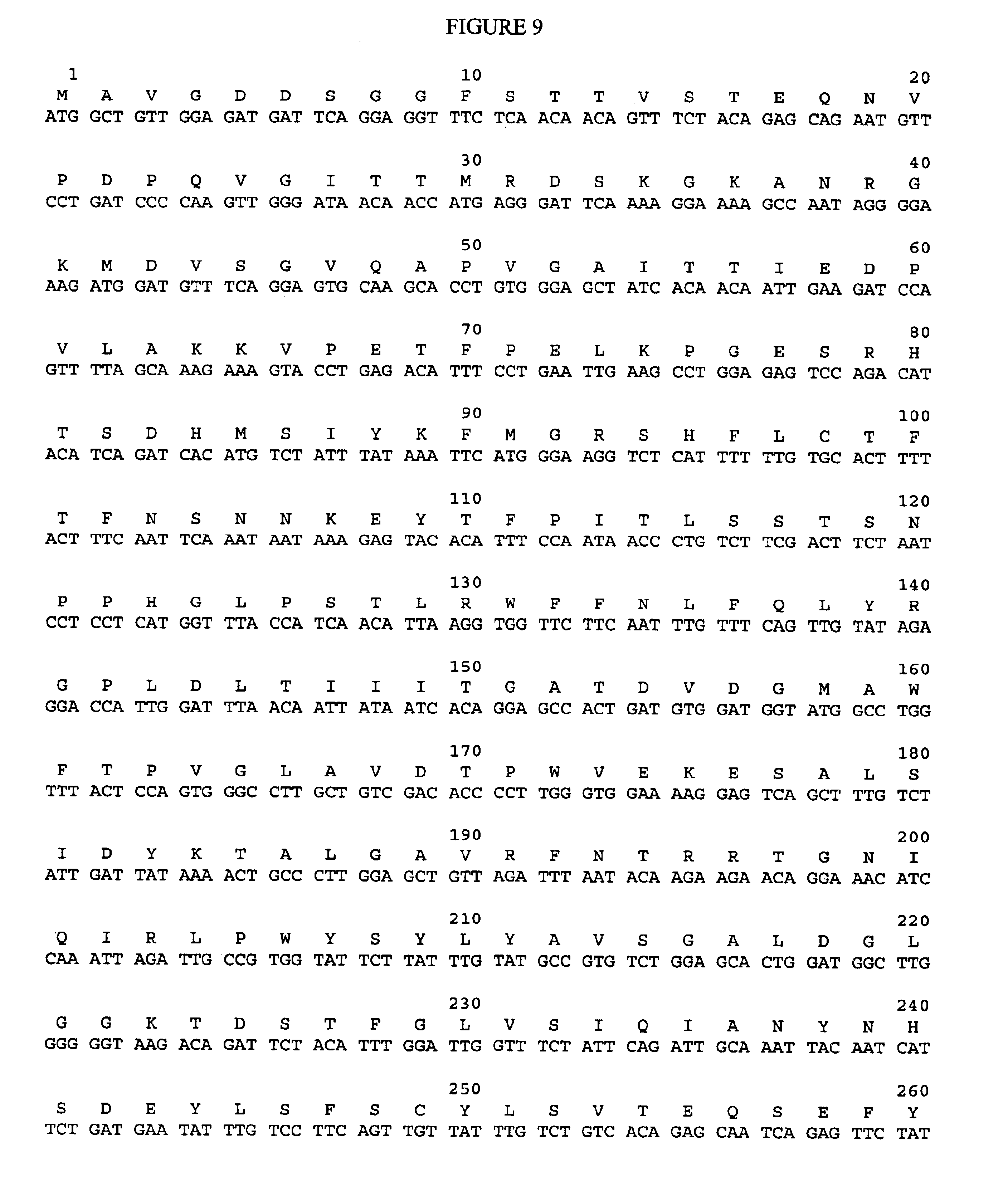 nucleotide sequences