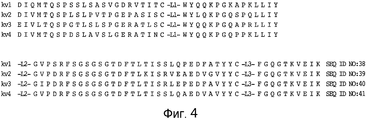 RU2476443C2 - NRR Notch1 ANTIBODIES AND METHODS OF APPLICATION ...