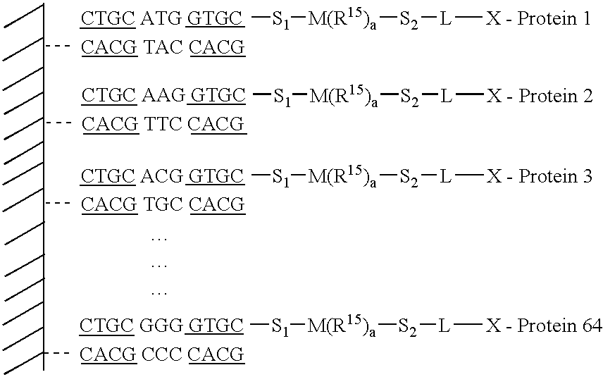 Figure US20040209255A1-20041021-C00016