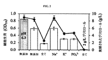 JP5242550B2 - グリセロールの嫌気醗酵 - Google Patents