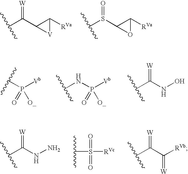 Figure US20040072849A1-20040415-C00136