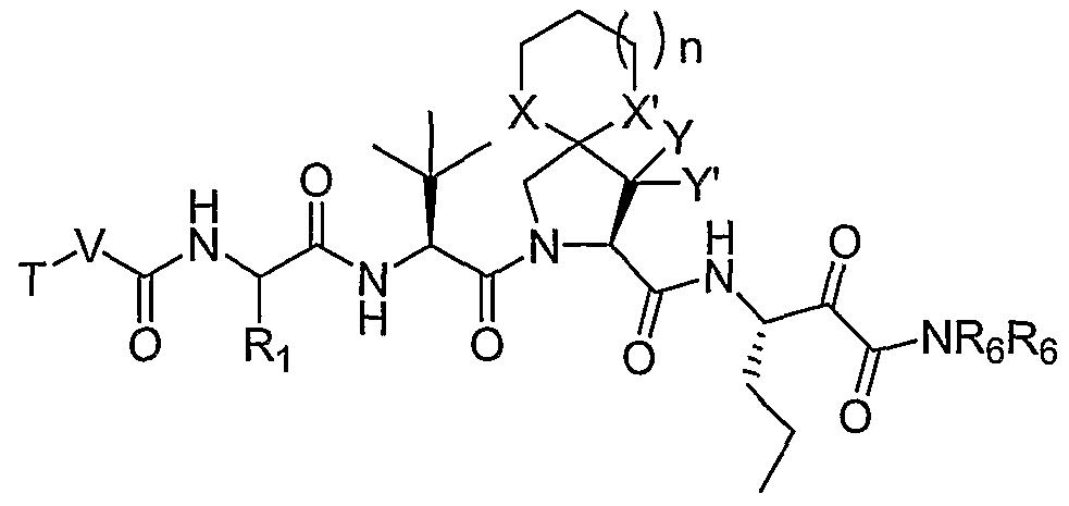 Figure imgf000052_0005