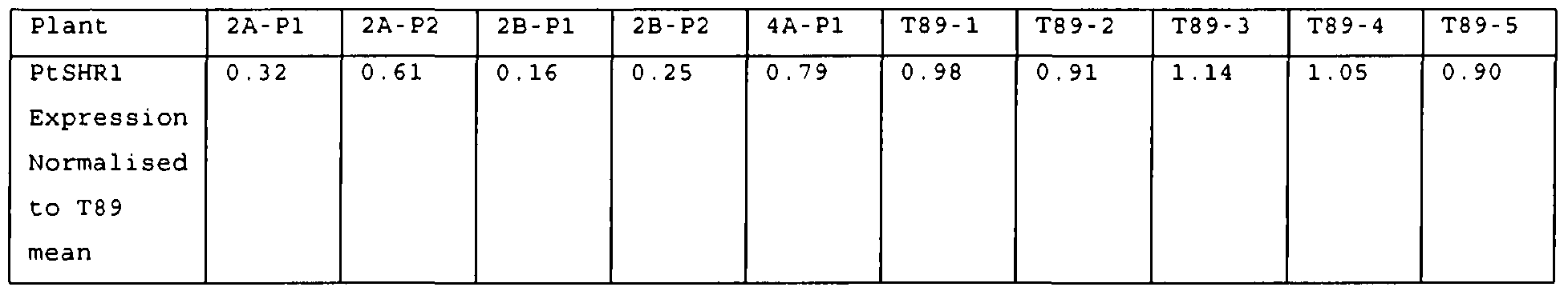 WO2008125983A2 - Methods of increasing plant growth - Google