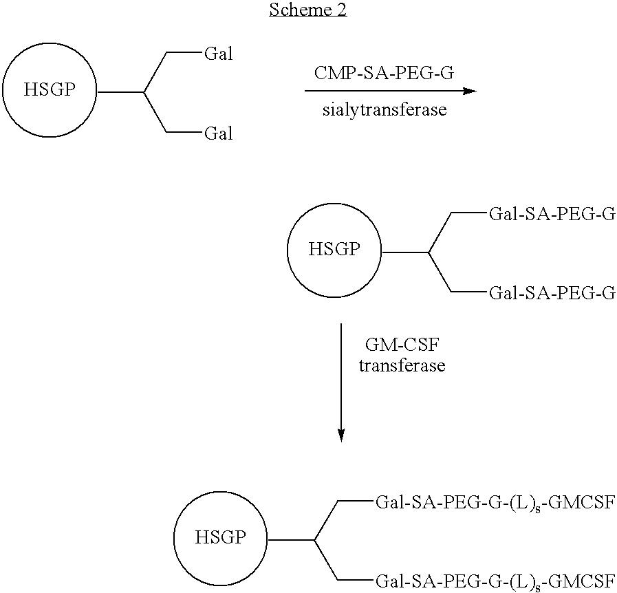 Figure US07338933-20080304-C00011
