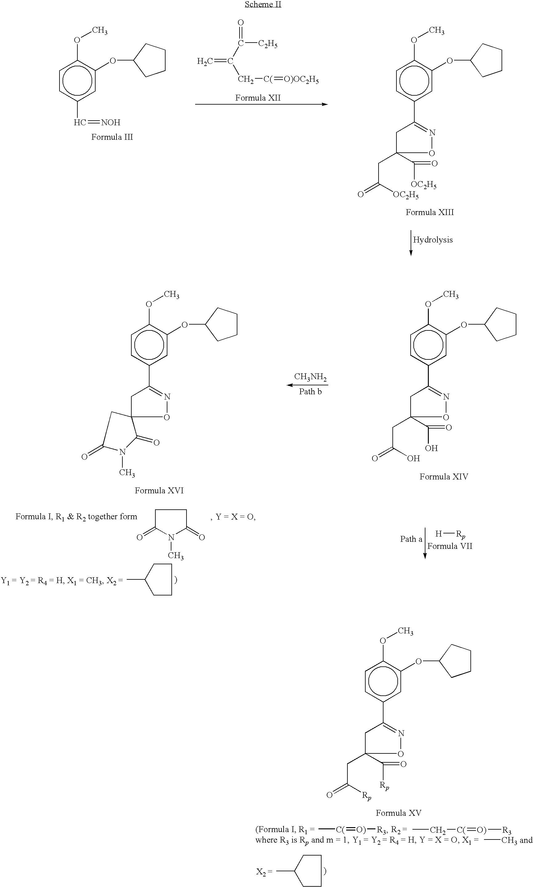 Figure US07825147-20101102-C00013