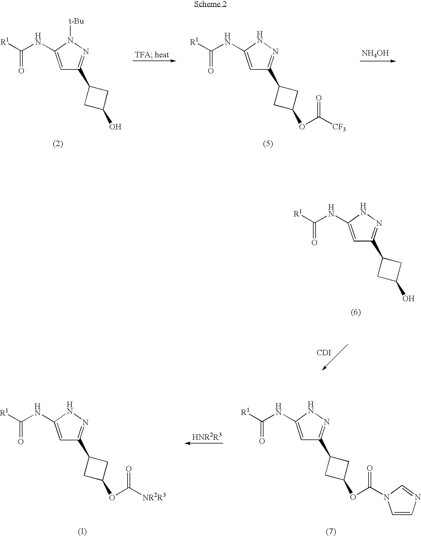 Figure US20070276010A1-20071129-C00006