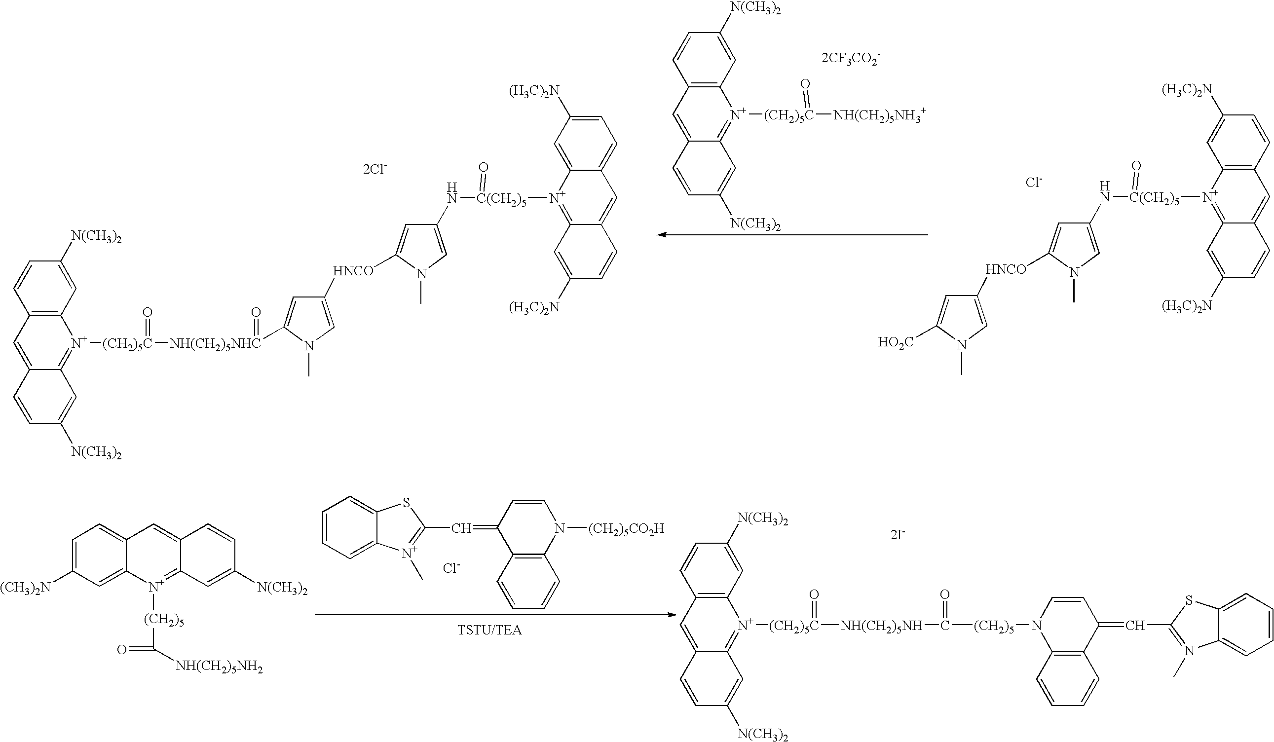 Figure US20060211028A1-20060921-C00066